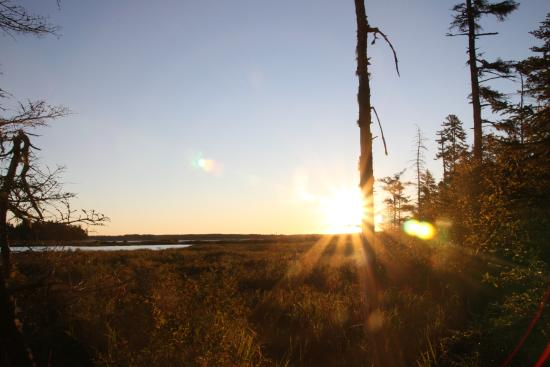 Seawall Campground: walking to the pond from B16 for sunrise