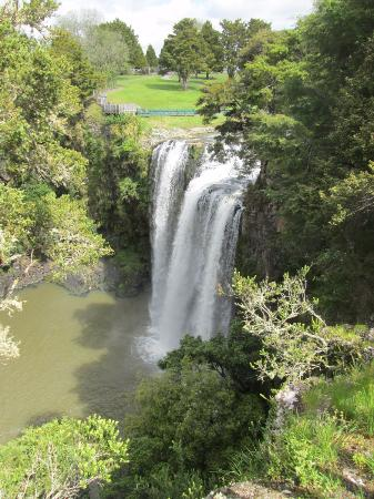 Whangarei, Nueva Zelanda: Above the falls
