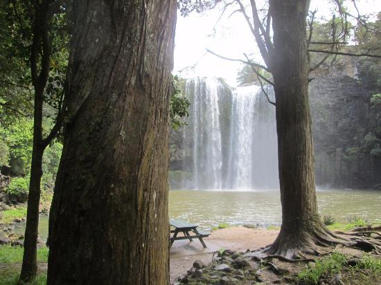 Whangarei, Nueva Zelanda: Picnic area