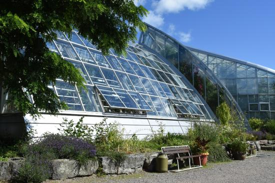 Turku University Botanical Garden