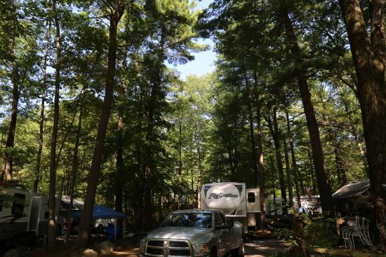 King Phillips Campground : RV Site