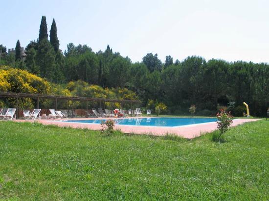 Montespertoli, Italien: La piscina e l'enorme giardino che la circonda