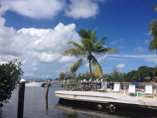 Amy Slate's Amoray Dive Resort: photo2.jpg