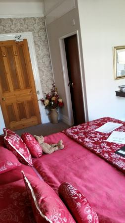 Plas Llwyd: A double room for a single price. Thanks!