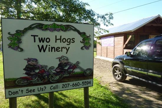 Vassalboro, ME: Two Hogs Winery