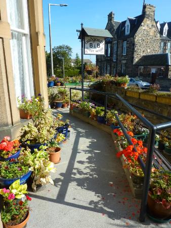 Ardgarth Guest House: Outside Ardgarth Guesthouse