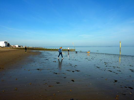 Ardgarth Guest House: Portobello Beach