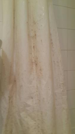hotel eiffel xv cortina de bao habitacin
