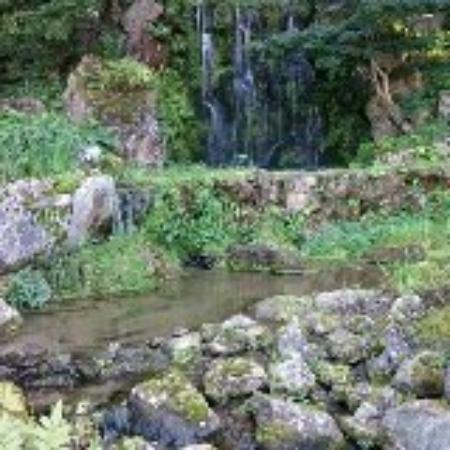 Ryugon: お庭にも滝がありました。各々の部屋からお庭が見える作りのようです。お風呂まで少し歩きますが、情緒があっていいです。早くチェクインして、お庭を散歩することをおすすめします。