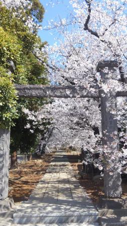 Kaizen-ji Temple