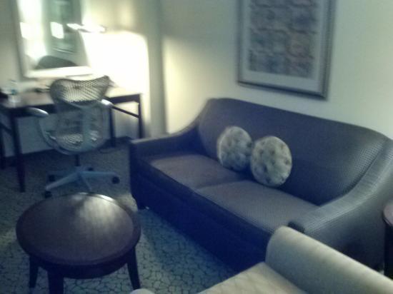 Hilton Garden Inn Tifton: living room area with sofa and desk