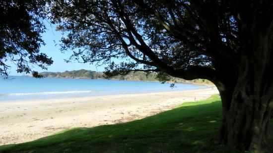 Waiheke Adası, Yeni Zelanda: Waiheke
