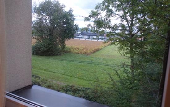 Ambient hotel Domzale: 窓から見た景色