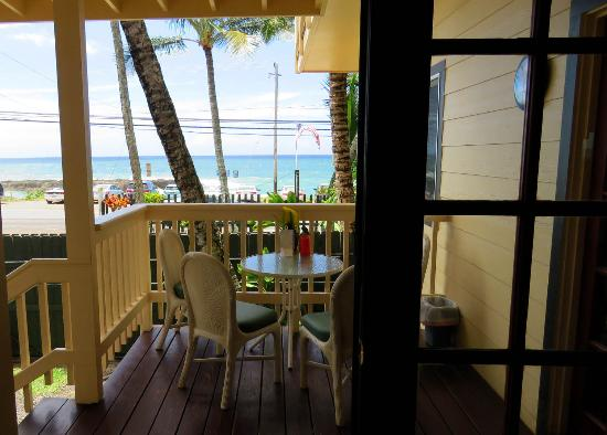 Sharks Cove Rentals: View from the house