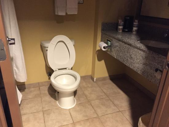 Red Lion Inn & Suites Saraland: Bathroom