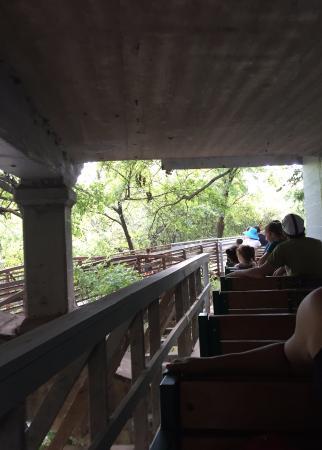 Zilker Zephyr Miniature Train: Riding under the Barton Springs Rd bridge