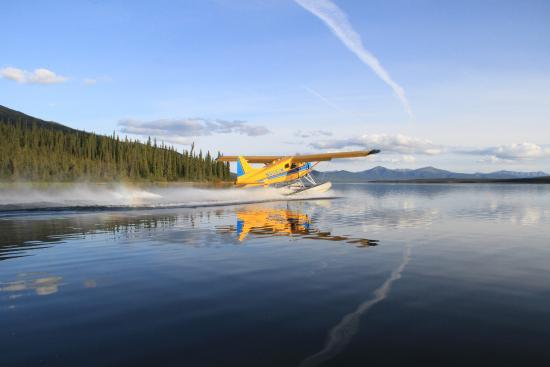 Iniakuk Lake Wilderness Lodge : Our Beaver floatplane
