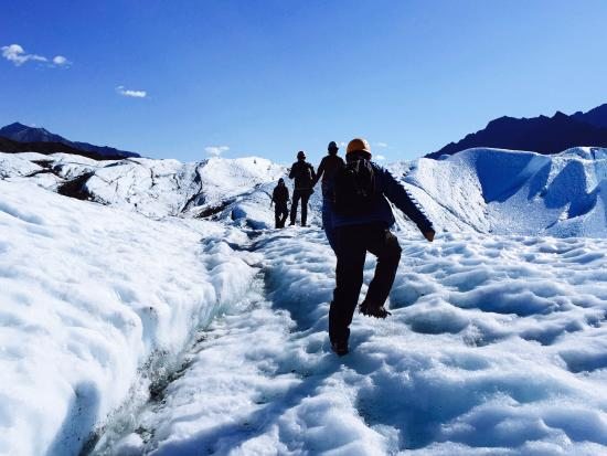 Glacier View, AK: Ice Trekking