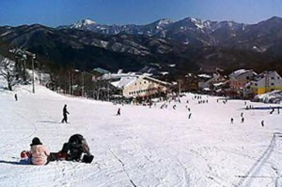 White World Oze Iwakura Image