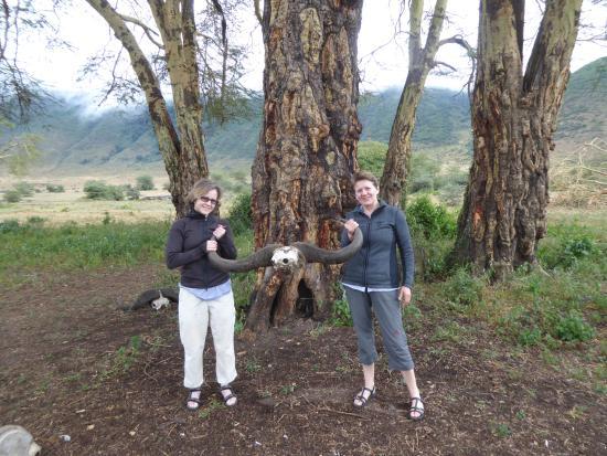 attraction review reviews safaris tours arusha region