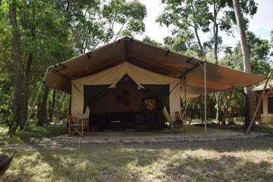 Nalepo Mara Camp: The lounge tent and bar