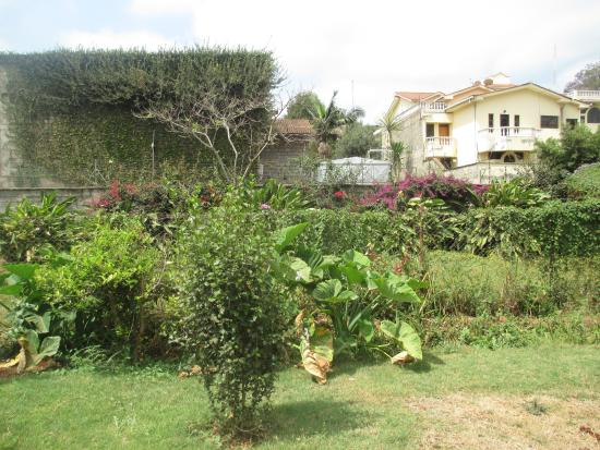 Gigiri Homestead: Neighbouring houses