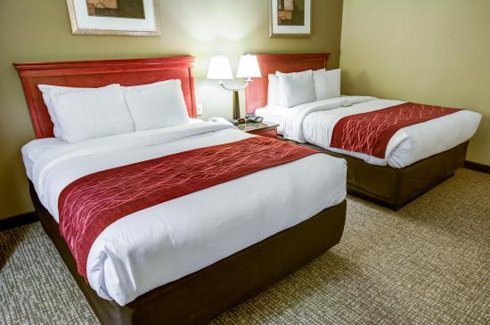 Comfort Inn: PADBLQNRM