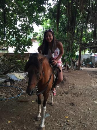 Boracay Horse Riding Stables : photo0.jpg