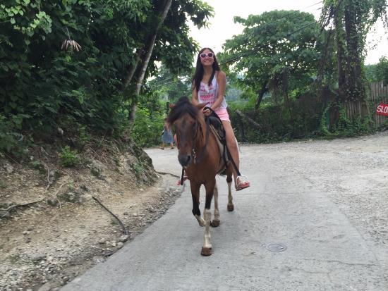 Boracay Horse Riding Stables: photo2.jpg