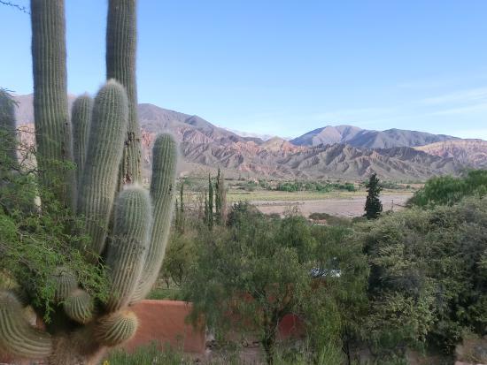 Cerro Chico: Aussicht vom Hotel