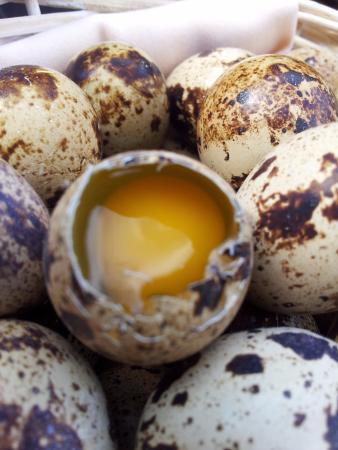 Vallirana, Hiszpania: Huevos de codorniz