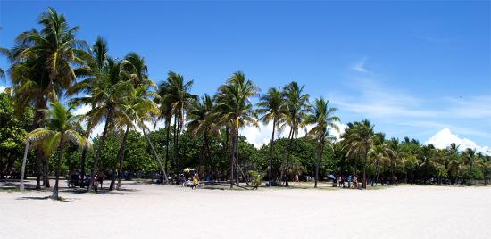 North S Open E Park Beach