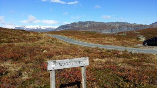 Коммуна Ванг, Норвегия: on the way to the top