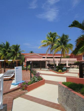 Vista Dal Open Bar Della Terrazza Picture Of Blau Arenal