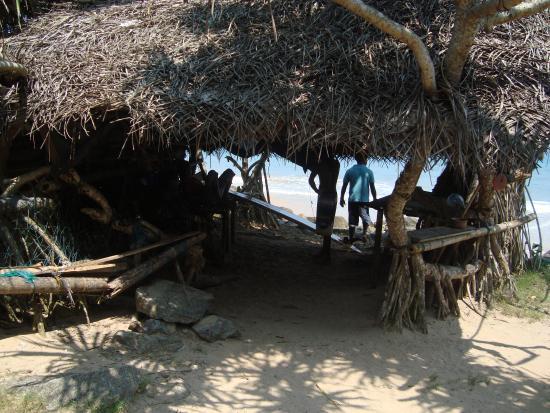 Green Garden Guest House, Sri Lanka: Beach