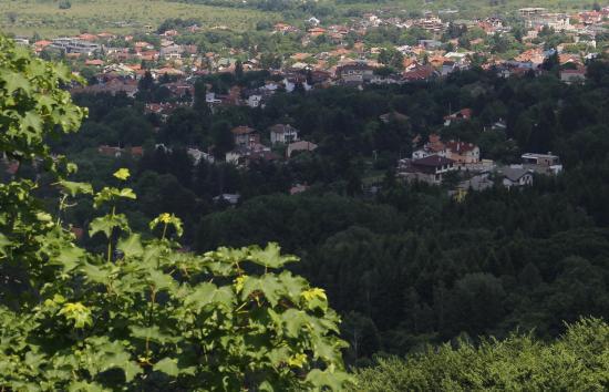 Boyana Village