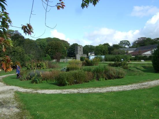 Rushen Abbey: The garden