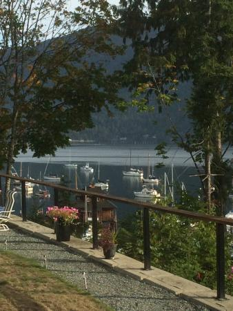 Cowichan Bay Guest Suites: View from Ocean View Suite