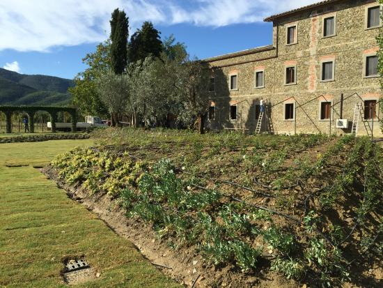 Castiglion Fiorentino, Italia: Gardens