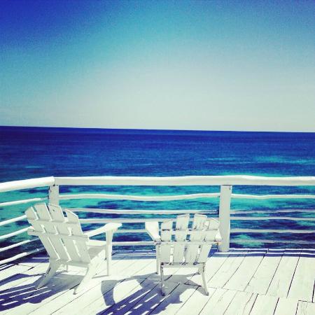 TulumBay Eco Beach: VIEW
