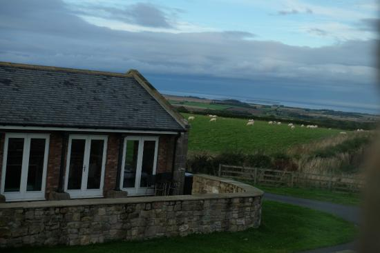 Chathill, UK: Views from the lounge/dining room