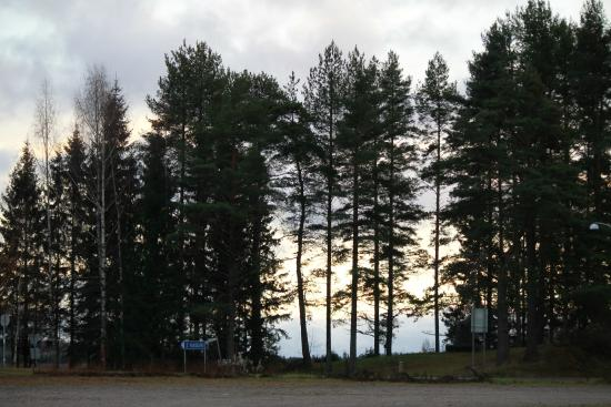 Parikkala, Finland: Заповедник птиц