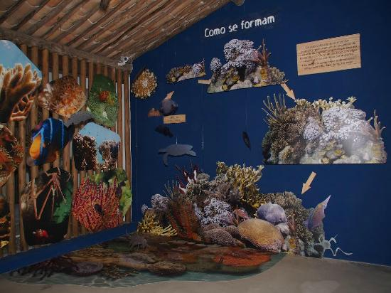Espaço Coral Vivo Mucugê