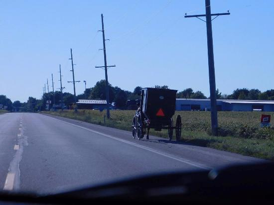 The Amish Country, in Arthur Illinois.