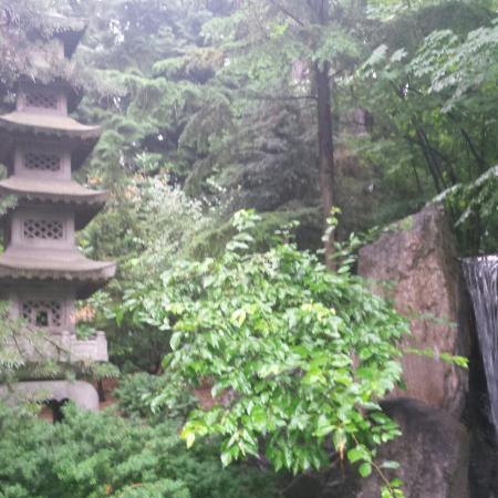 Nishinomiya tsutakawa japanese garden spokane wa omd men for Nishinomiya tsutakawa japanese garden koi