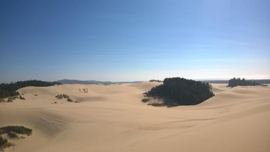 Florence, Oregón: Sand as far as the eyes can see