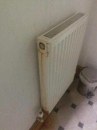 Hotel Clamart: Disgusting radiator int he bathroom
