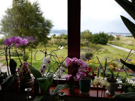 Fernlea: Vista dal salotto