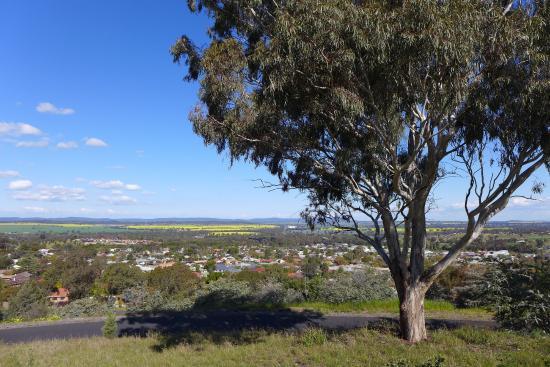Memorial Hill Lookout