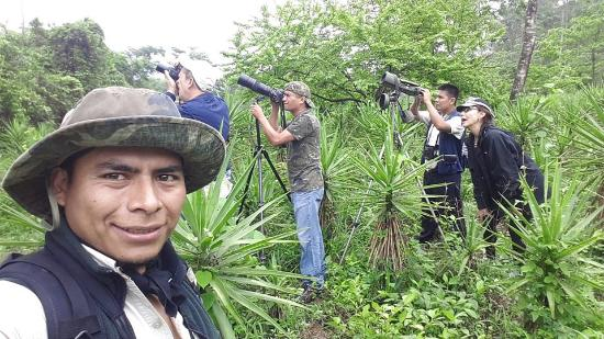 Western Highlands, Guatemala: Shoting the Northern Potoo